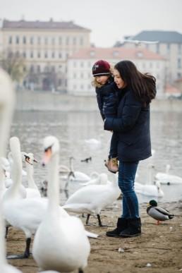 Семейная фотосессия в Праге в декабре с лебедями на набережной Влтавы.