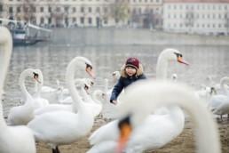 Семейная фотосессия в Праге зимой с лебедями на набережной Влтавы.