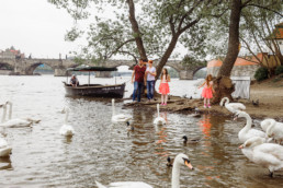 Фотопрогулка по Праге № 2. Фотосессия на набережной с лебедями